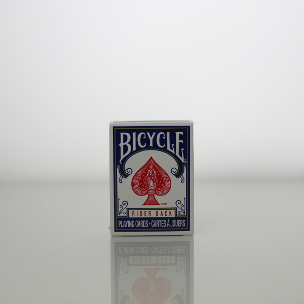 Mini Bicycle Rider Back
